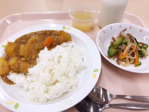 小学校の給食のカレー