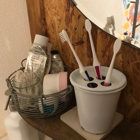 家族3人分の歯ブラシを立てて収納