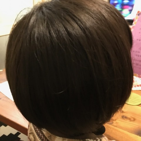 バシュカのヘアブラシ使用前