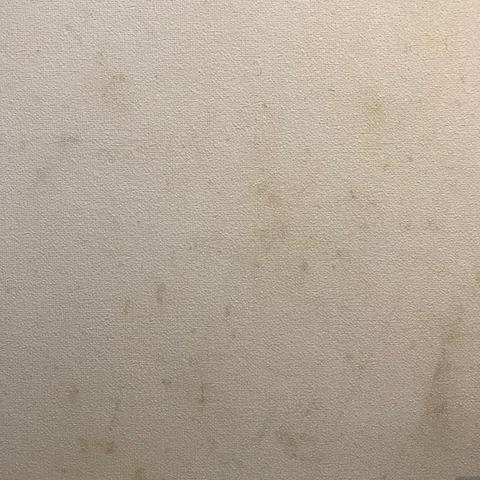 オキシクリーンで壁紙掃除ビフォア