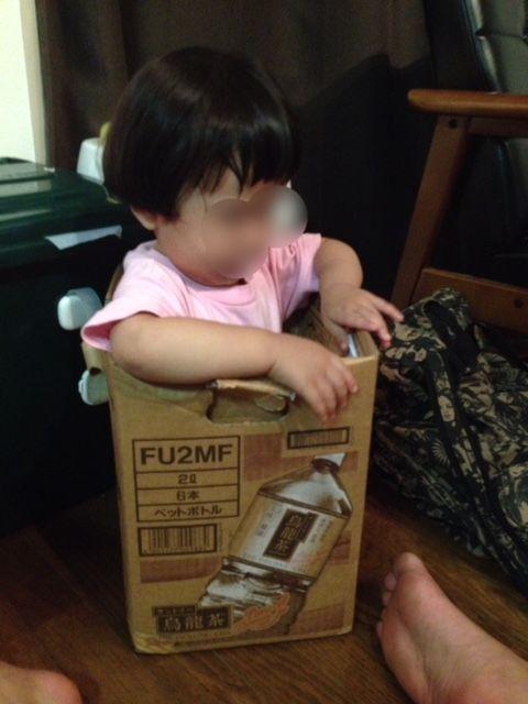 段ボールに入った子供1歳8か月