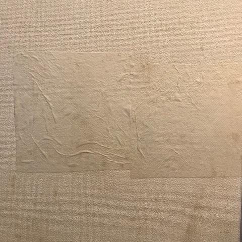 オキシクリーンで壁紙掃除キッチンペーパーでパック