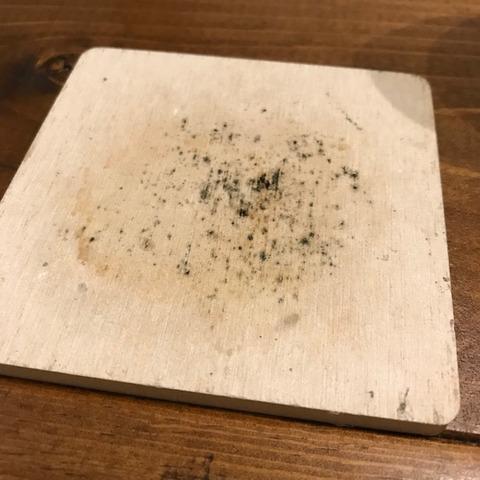100均珪藻土コースターにカビ