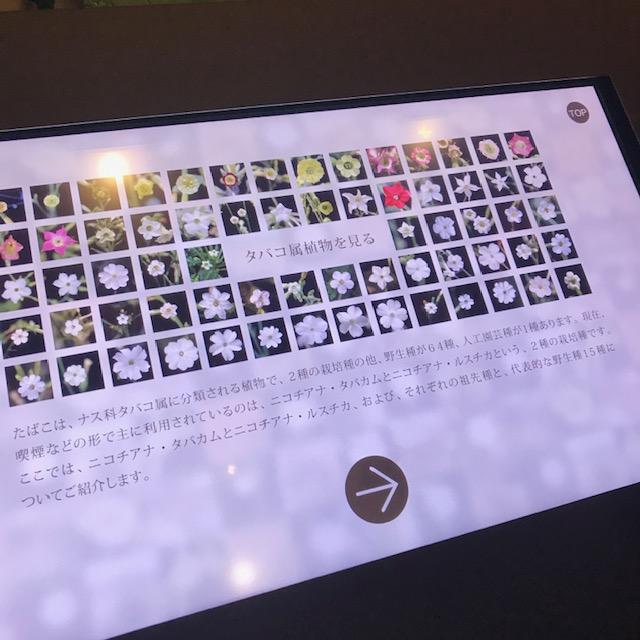 たばこと塩の博物館タッチパネル式モニター