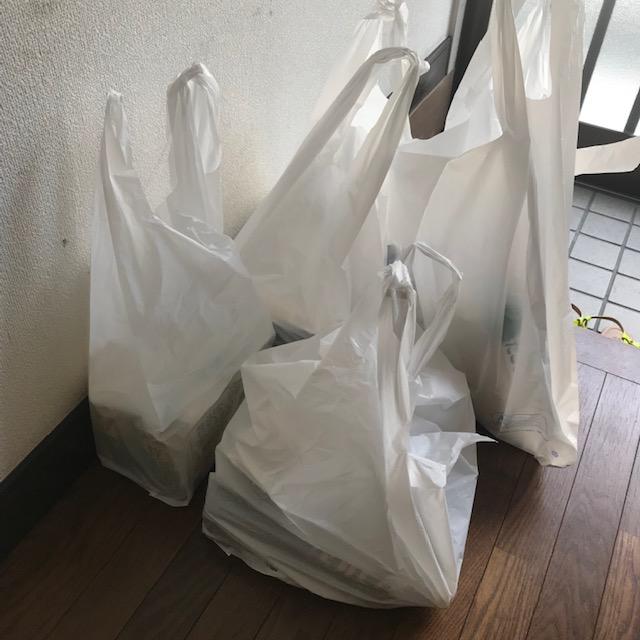 楽天西友ネットスーパーで注文すればレジ袋無料