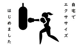 フィットボクシングはじめました
