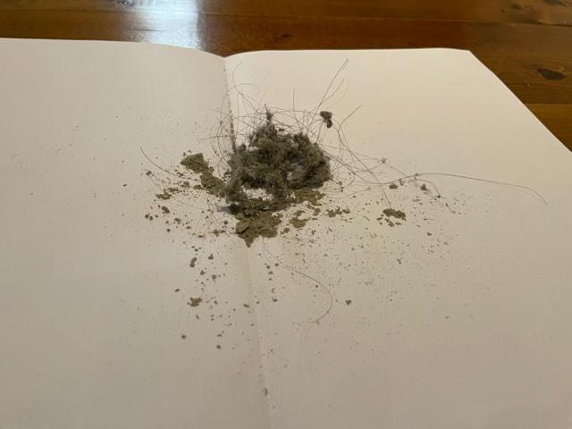 ダイソンの掃除機でとれたゴミの量