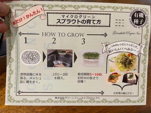 スプラウト栽培専用容器で育て方